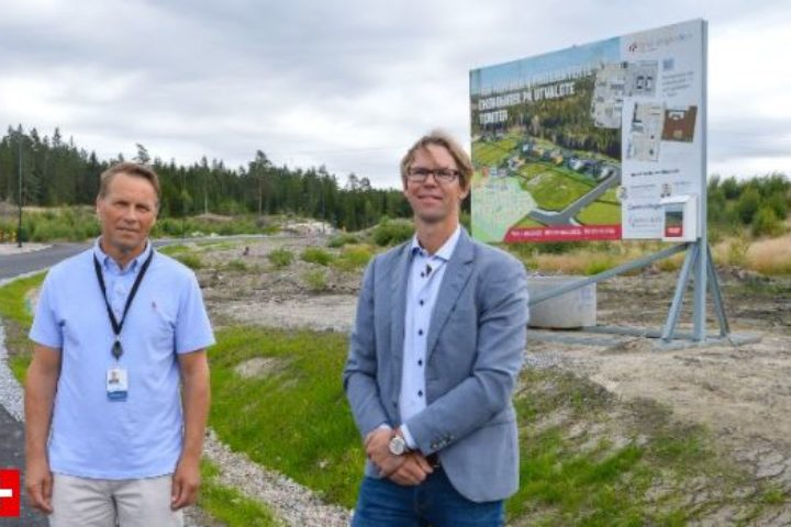 Brunsbykollen i Varteig: Her kan du bygge din egen enebolig